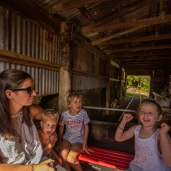 Pioneer Village Train Experience
